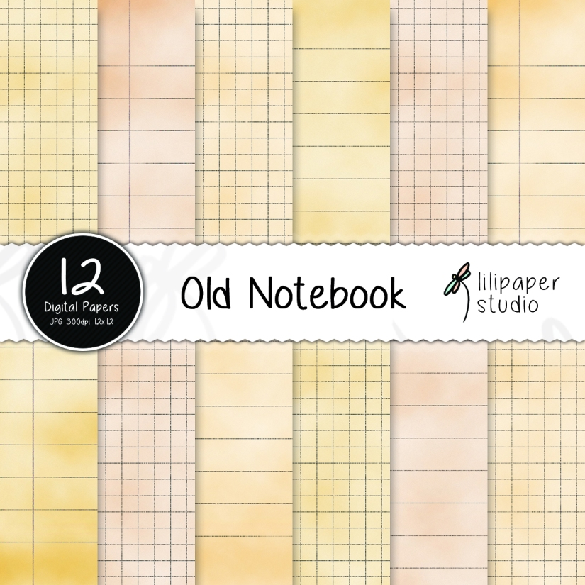 oldnotebook-lilipaperstudio41-cover1.jpg